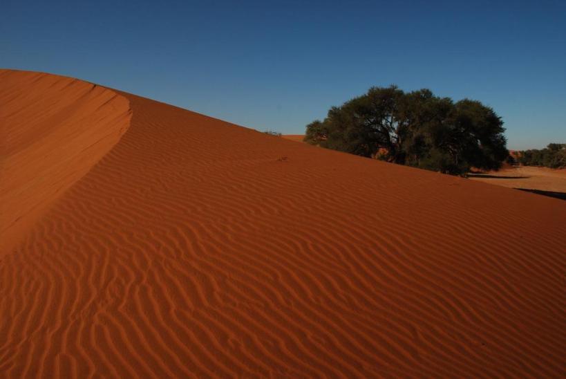 283_on-v-Periple_en_Namibie_et_Safari_au_Botswana__Agence_Esprit_d_Aventure